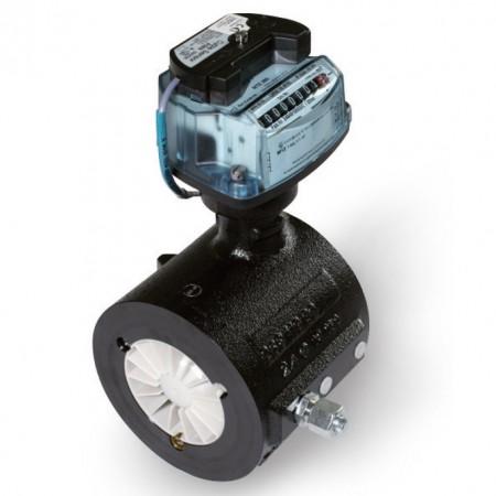 Itron Gas Meter MZ100